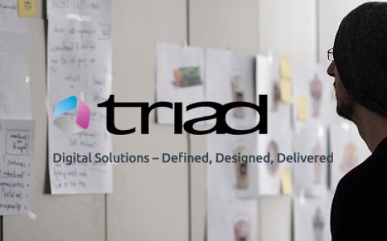 Triad Group Plc – Case study